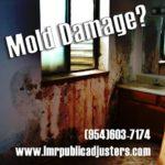 Mold Damage Insurance Adjuster